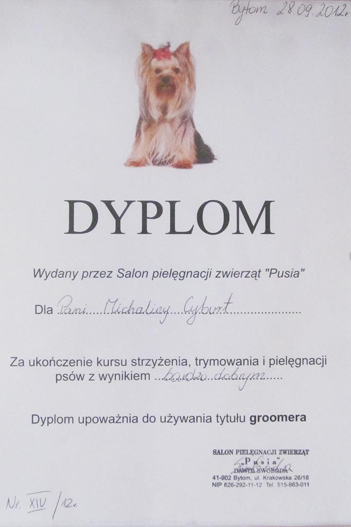 Super Pies Salon Pielęgnacji Psów I Kotów Gliwice