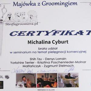 groomer-gliwice-dyplom-4